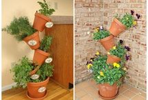 Patio Veggie and Herb Garden Ideas! / by Ali Baily