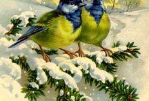 картин птиц