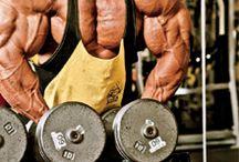 Musculação / Musculação e Fitness