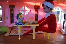 Elf on the Shelf! / Christmas Traditions