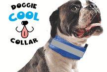 Doggie Cool Collar / Safe Dog Cooling Collar