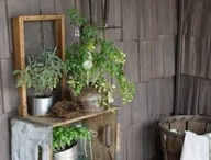 Porchsperation / I want to add a whole lot more green to my porch since I happen to live in a very concrete corner of the city. These are pictures and tips to halt me do that. Maybe , just maybe they will inspire you to join me and to greening up your home.