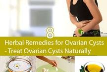 Spices and Herbs / Spices and herbs can help reverse symptoms of PCOS