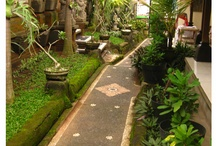 BALI / things that remind me of my hometown