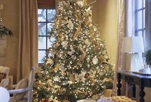 White and Gold Christmas / Proposed 2016 theme / by Jessica Thompson