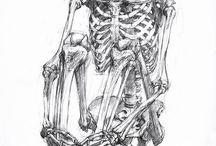 Anatomi tattoo
