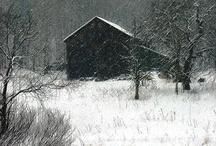 Snowy views / by Suzy Poynter
