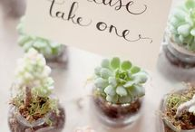 For Celebrating / Event decor, venues, and cute ideas