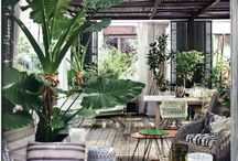 decoracion tropical