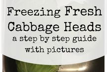 Cabbages freezing