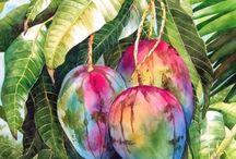 mango fruit tree