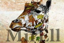 Dierenrijk / Dieren zijn fascinerend. Een grote inspiratiebron voor mijn werken.
