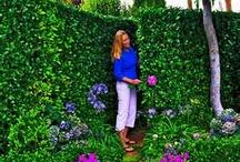 Garden room inspiration