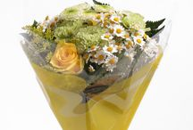 Sleeves from Europe / Find our best designs and materials to use to make your flowers and plants even more attractive.