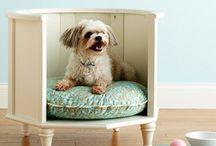 Perrunis - ideas, diy y demás cosilas para perros