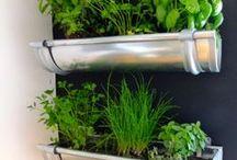 Bricolage | Jardinière / De nombreuses inspirations pour égayer un peu plus votre jardin et la maison avec des fleurs dans une gouttière.