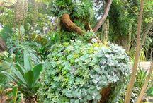 Esculturas de jardín