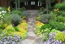 Landscaping, Pools & Outdoor Escapes / by Jane Warrick