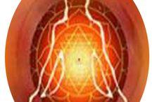 Astrologer / Jyotish,Palmist,Tantrik..