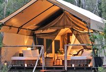 Glamping / by Rayan Turner / The Design Confidential