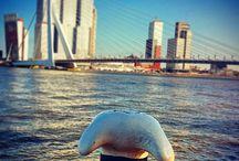 city scapes / #city #citylights