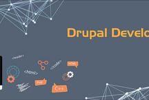 Drupal Development / Drupal Development