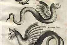 Sárkányok, dragons