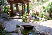 Backyard / by Lisa Bechtold