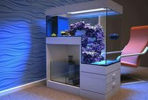 reefscaping