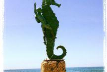Puerto Vallarta Atractivos