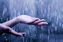 [写真][N] Rain / Photography > Nature > Rain