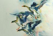 Ptaki w malarstwie / To co podziwiam i sie zachwycam / inspiracje