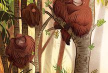 Illustrations / cliparts