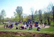 Parco del Cormor