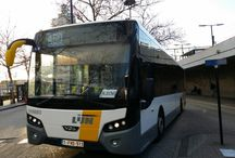 Bus / by Joseph Chidiac