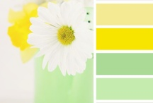 yellow with green