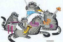 CATS BD
