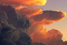 Beauty / by Anoop Tiwari