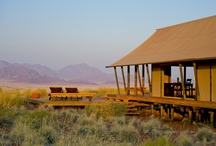Dune Camp