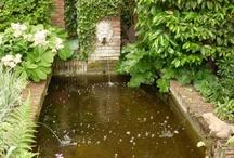 bassin d ornement