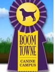 Boom Towne Canine Campus / In and around Rochester NY when it comes to Dog Boarding, Dog Grooming, Dog Training, and Doggy daycare, Boom Towne Canine Campus is referred to as the best in the area. We are the cleanest, healthiest, safest, and largest facility for your dog. We are not your average Kennel.  We guarantee your dog will love coming to Boom Towne. We even offer the ability to watch your dog live while you're away, right from the Boom Towne Website!