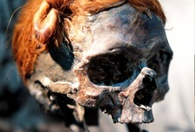 Mummified and bog bodies