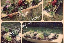 Naša záhrada...