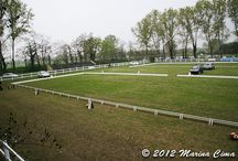 Ravenna CIC/CCI 2012