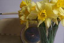 Mothers Day Flowers / http://thelondonflowerlover.wordpress.com/