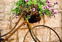 Fahrräder / Alt und neu