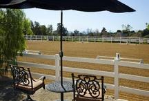 4. outdoor arena