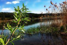 Ostorosi tó . / Tavasz beköszönte .