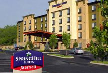 Hotels / Whether you are planning a trip by yourself or plan on bringing a large group, there is no better place for you to stay than one of the relaxing Pigeon Forge hotels and motels in the area.