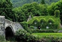 Cottages  & Houses  / by Jaime RispoliRoberts
